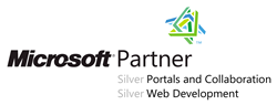 Unser Microsoft Partner Logo für Silver Portals and Collaboration und Silver Web Development und Silver Software Development