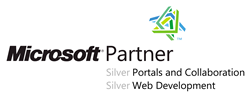 Unser Microsoft Partner Logo für Silver Portals and Collaboration und Silver Web Development